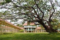Phra Ratchaniwet Maruekhathaiyawan gloden teak palace Stock Photos