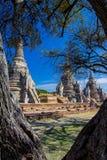 Phra Sri Sanphet temple in Ayutthaya, Thailand. Royalty Free Stock Photos