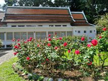 Phra Tamnak Phuping Rajanives, the main building of the Winter Palace , in the rose garden. Phuping Palace Royal winter residence in the mountains near Chiang stock photography