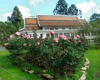 Phra Tamnak Phuping Rajanives, the main building of the Winter Palace , in the rose garden. Phuping Palace Royal winter residence in the mountains near Chiang royalty free stock photography