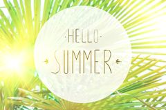 Phrase Hello summer on the background of green foliage and sunlight. Selective focus stock illustration