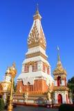 Phrathatphanom Arkivbilder