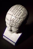 Phrenology Head Stock Image