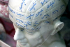 Phrenology head Royalty Free Stock Photography