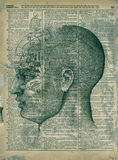 Phrenology Head. Mixed medium collage phrenology head and antique dictionary page. Numbers reversed-this is a right brain thinker Stock Photos
