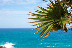 Phromthep海角,意想不到的海andaman在普吉岛海岛,泰国 免版税库存照片