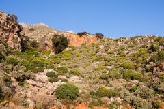 Phrygana landscape Stock Image