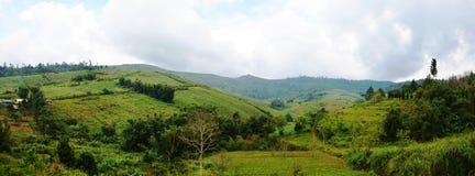 从Phu木盆Berk,碧差汶省,泰国的全景视图 库存照片