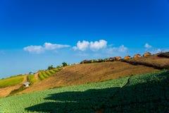 Phu balii góry lodowa kho phetchabun Obraz Stock