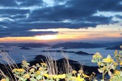 Phu Chi Fa lasu państwowego park zdjęcie royalty free