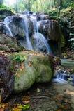 Phu-Kaeng vattenfall i djup skog i Thailand Fotografering för Bildbyråer