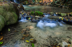 Phu-Kaeng waterfall in deep forest in Thailand. Daytime Stock Images