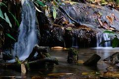 Phu-Kaengwasserfall im tiefen Wald in Thailand lizenzfreie stockfotos