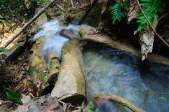 Phu-Kaengwasserfall im tiefen Wald in Thailand stockbilder