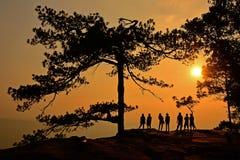 Phu Kradueng nationalpark Royaltyfri Fotografi