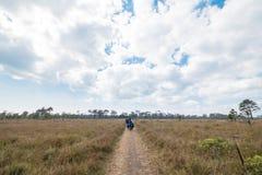 Phu Kradueng nationalpark Royaltyfri Bild