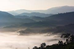 Phu Lanka i halna ranek mgła Fotografia Stock