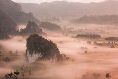 Phu Lanka , Phayao , Thailand ,Trees and mountains morning mist. Stock Photography