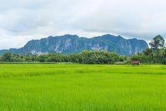 Phu Pha Man Stock Photos