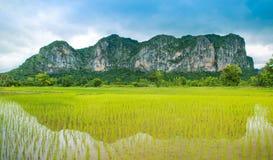 Phu Pha Man Stock Image