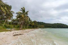 Phu Quoc海岛海岸线有海藻和垃圾的在海滩 免版税图库摄影