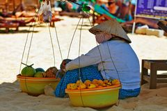 Vietnamese fruits saleswoman resting in shadow Stock Photography
