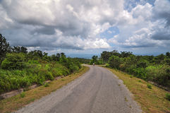 Phu Rua国家公园 免版税库存图片