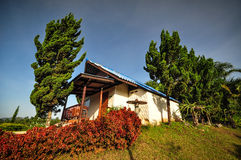 Phu Rua National Park Στοκ Εικόνες