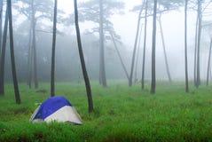 Phu Soi Dao National Park Royalty Free Stock Image