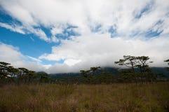 Phu soi dao national park Uttaradit stock image