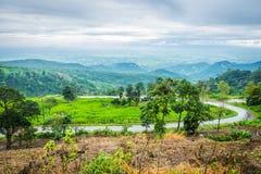 Phu Tab Berk Royalty Free Stock Photo
