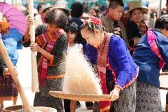 Phu Thai minority woman winnowing rice. KALASIN,THAILAND-MARCH 9 : Group of unidentified Phutai minority senior woman competitive pounding and winnowing rice Royalty Free Stock Images