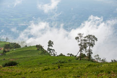 Phu Thap withdraw, Mountain Stock Photography
