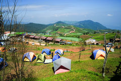 Phu Tub Berg Lom Kao Phetchabun Stock Photo
