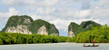 Phuket Island coastline. Covered with mangroves which provide homes for fish and subdue erosion of the shoreline, Thailand stock photo