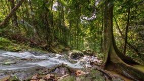 Phuket island famous ton sai waterfall sunny view 4k time lapse thailand stock video