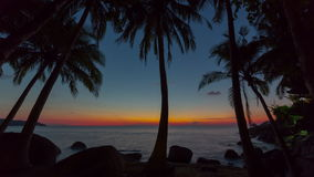 Phuket island palm paradise beach sunset panorama 4k time lapse thailand stock video