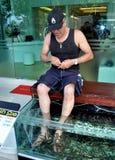 PHUKET, TAILÂNDIA: Homem que começ a massagem do pé dos peixes Foto de Stock Royalty Free