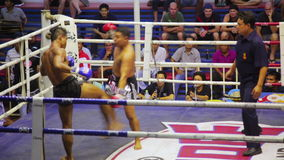 PHUKET,THAILAND - JUNE 2014: Muay Thai box matches. Night time,boxing stadium stock video footage