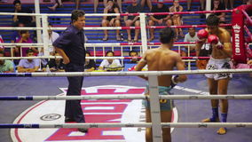 PHUKET,THAILAND - JUNE 2014: Muay Thai box matches. Night time,boxing stadium stock footage