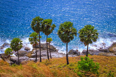 Phuket in thailand Stock Photo