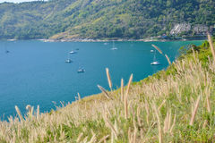 Phuket widoku punkt z trawy polem Obraz Royalty Free