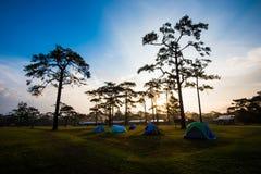 PhuKradueng national park Royalty Free Stock Images