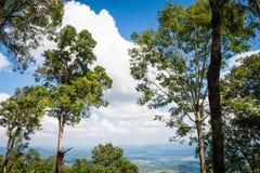 Phukradueng National Park Royalty Free Stock Photography