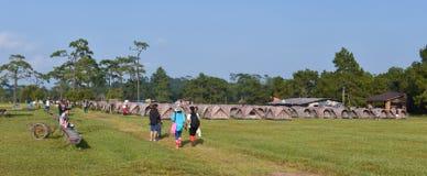 PhuKradueng national park Stock Photography