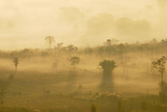 Phulangga. Sunrise with mist view at Phulangga, Phrayoa Royalty Free Stock Photography