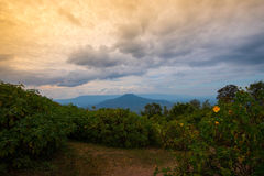 Phupapoh przy Loei Tajlandia Zdjęcie Stock