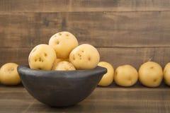 Phureja jaune de solanum de pomme de terre Images libres de droits