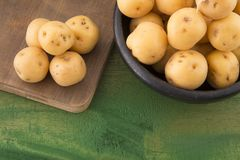 Phureja jaune de solanum de pommes de terre Photographie stock
