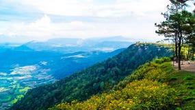 Phurua国家公园 免版税库存图片